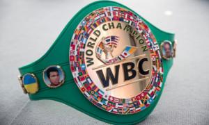 WBC ініціює створення нової вагової категорії між важкою вагою і хевівейтом