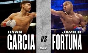 WBC санкціонував бій Гарсія - Фортуна