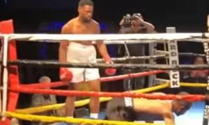 Боксери відправили один одного в нокдаун