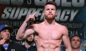 Альварес проведе бій з боксером з п'ятьма поразками