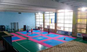 У Полтаві створили нову спортивну школу