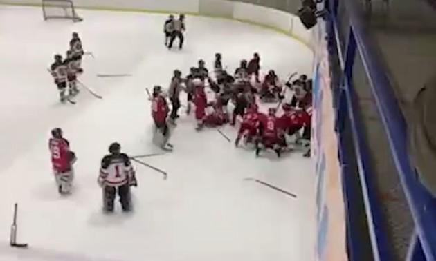 Матч між командами ЛНР і Воронежа закінчився масовою бійкою в найкращих зразках НХЛ