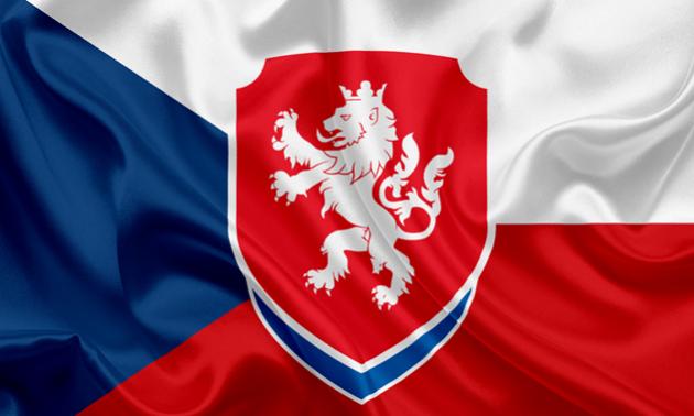 Чеська федерація футболу засудила висловлювання голови правління Славії