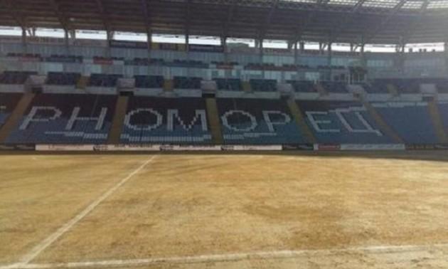 Це перемога: як в Одесі газон фарбують. ВІДЕО