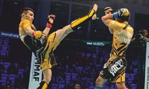 У Харкові відбудеться Кубок України із ММА