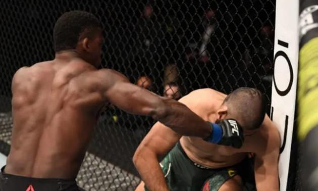 Нокаут за 18 секунд. Гоус яскраво дебютував у UFC