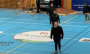 П'яний водій протаранив стіну залу під час гандбольного матчу у Швеції